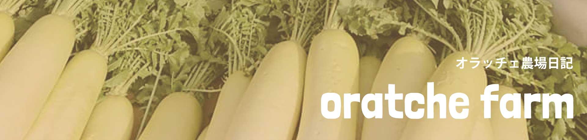 オラッチェ農場日記